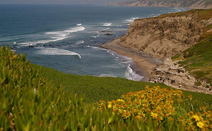 Hidden Gems Of The Central Coast: Must-see Spots Along California's Highway 1